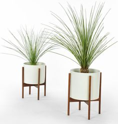 99 Great Ideas to display Houseplants | furniture & decoration ...
