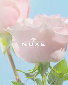 NUXE VERY ROSE FRISSÍTŐ, TONIZÁLÓ PERMET 🌹💦 Ez a csodás permet frissítő hatással van a bőrödre. Puha és selymes érzetet nyújt, anélkül, hogy megzavarná bőröd természetes egyensúlyát. Minden bőrtípusra alkalmazható, akár érzékeny bőrűek is használhatják. 💦 Minden, Rose, Pink, Roses
