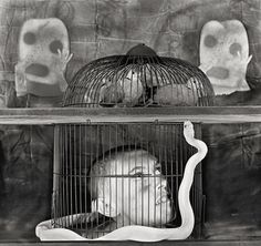 'Asylum of the Birds'   Photo by Roger Ballen #art #photography #southafrica