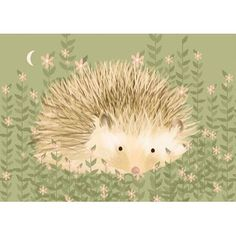 """Oopsy Daisy Holly the Hedgehog Canvas Art Size: 10"""" H x 14"""" W x 1.5"""" D"""