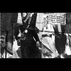 Sterile Garden [Cassette]