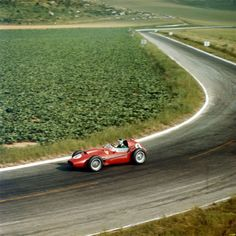 Mike Hawthorn - Scuderia Ferrari - Ferrari Dino 246 - GP de Francia 1958 (Reims)