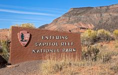 Looking for a new destination? Capitol Reef National Park has hiking, fruit-picking, family-friendly activities and more.
