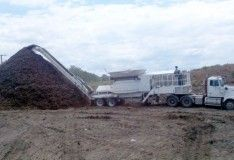 Best land clearing service in Queensland