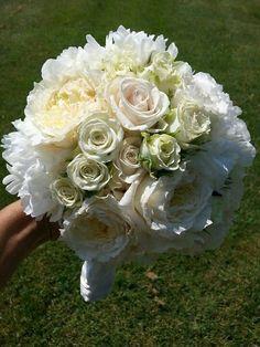 Peonie roses david austin roses