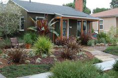 Awesome!!! Drought-tolerant garden saving the $ and keeping healthy :)  No grass to chemical and mow!