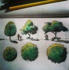 Landscape architecture rendering sketch Ideas for 2019 Sketchbook Architecture, Landscape Architecture Drawing, Landscape Sketch, Landscape Plans, Landscape Drawings, Landscape Design, Architectural Trees, Rendering Techniques, Drawing Techniques