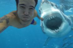 Everything about this article is wrong: Man Takes Selfie Moments Before Deadly Shark Attack #ThatsPeteWentz #WhoAnswersInTheComments #AndIsVeryMuchAlive