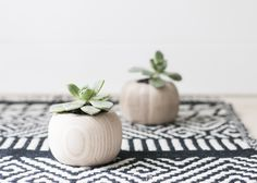 diy mini wooden succulent vase