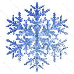 snowflake_3_3.jpgbb405489-da5c-4bb7-b5e7-295bdc7ef335Original.jpg (1600×1600)