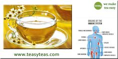 Chamomile Tea Benefits, Immune System, How To Make