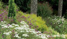 Cómo plantar un jardín sin problemas