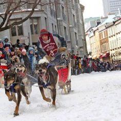 La course de traîneaux à chien lors du Carnaval de Québec, en la Ville de Québec  //  Dog sled race, Carnaval de Québec