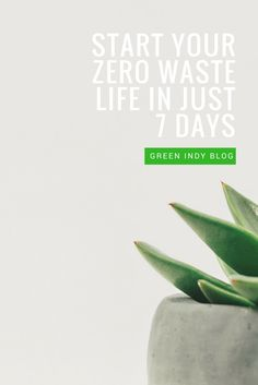 So you've been toying with the idea of zero waste (or at least making your life a little greener) but aren't really sure where to start. Well it just so happens I have some major inspiration for you RIGHT HERE IN THIS BLOG POST.
