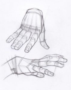Enjoy a collection of references for Character Design: Hands Anatomy. The collection contains illustrations, sketches, model sheets and tutorials… This Hand Anatomy, Anatomy Art, Anatomy Drawing, Anatomy Sketches, Drawing Sketches, Drawings, Drawing Tips, Sketching, Body Drawing