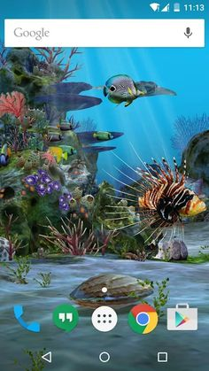 3D Aquarium Live Wallpaper HD - Apps on Google Play Aquarium Live Wallpaper, Fish Wallpaper, Perfect Teeth, Live Wallpapers, Under The Sea, Google Play, Red Roses, Android, Apps