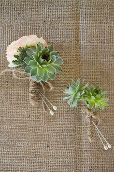 succulent and burlap love