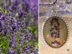 Levendula Bird Feeders, Celestial, Outdoor Decor, Jewelry, Jewlery, Jewerly, Schmuck, Jewels, Jewelery