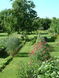 Garden with perennial border in front.