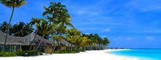 Can Gio Mangrove Forest & Monkey Island