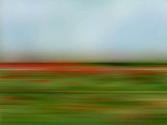 American Abstract Landscapes by Danae Falliers