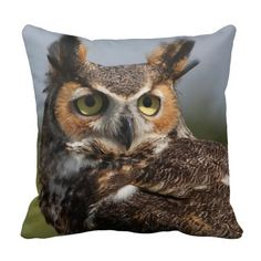 =>quality product          	GH Owl 4 - Pillows           	GH Owl 4 - Pillows In our offer link above you will seeDiscount Deals          	GH Owl 4 - Pillows Here a great deal...Cleck Hot Deals >>> http://www.zazzle.com/gh_owl_4_pillows-189948533331832437?rf=238627982471231924&zbar=1&tc=terrest