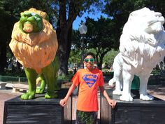 More Lions! Colorful - Ponce!