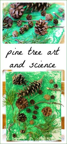 Pine tree art project for kids to make while exploring early science concepts. Perfect idea for a winter theme, a tree theme, or around winter and Christmas. #Winter #Christmas #Preschool #PreschoolArt #PreschoolTeachers #PreK #FunADay #ProcessArt #KidsArt