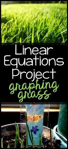 Graphing Grass Linear Equations Project – Well come To My Web Site come Here Brom First Grade Projects, Kindergarten Projects, Math Projects, Kindergarten Math, Google Classroom, Math Classroom, Anchor Charts, Escape Room, 8th Grade Math Worksheets