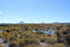 The Overland Trek; Tasmania, Australia
