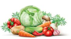 Illustration about Vegetables group on the white background. Illustration of corporate, composition, vegetables - 48246562 Watercolor Fruit, Fruit Painting, Pomegranate Art, Vegetable Illustration, Food Clipart, Disney Princess Colors, Garden Catalogs, Summer Clipart, Princess Coloring