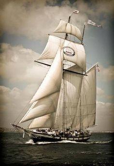 "The rakish topsail schooner ""Californian"", replica of a 1847 Revenue Cutter, under full sail"