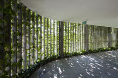 Gallery - Naman Retreat / Vo Trong Nghia Architects - 8