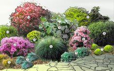 Buszując w ogrodzie: Trawy ozdobne - propozycja rabat Yard, Landscape, Flowers, Gardening, Tiramisu, Photography, House, Gardens, Garden Design