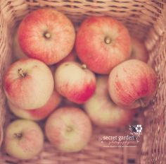 apples autumn stilllife photo print  whimsical by secretgardentwo, £13.00