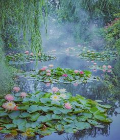 """rosiesdreams: """"Monet's Pond. By Mika mikasuutari """" Beautiful Landscapes, Beautiful Gardens, Beautiful Flowers, Monet Paintings, Landscape Paintings, Impressionist Paintings, Water Lilies Painting, Nature Aesthetic, Lily Pond"""