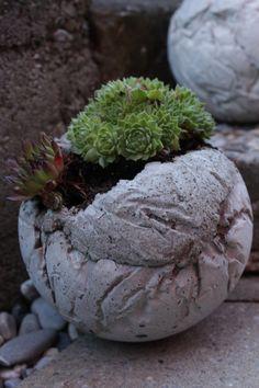Diy Cement Planters, Concrete Art, Mosaic Art, Mosaics, Types Of Plants, Container Gardening, House Plants, Garden Sculpture, Design Art