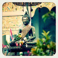 slightly parannnoyed buddhahovering