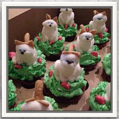 Kitty cat Cupcakes