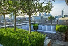 Rooftop In Bermondsey Olive Trees Underplanted With Rosemary Surround Contemporary Built-In Bench On London Roof Terrace Charlotte Rowe Garden Design Roof Terrace Design, Roof Design, Rooftop Terrace, Terrace Garden, Rooftop Gardens, Terrasse Design, Garden Floor, Roof Architecture, Patio Roof