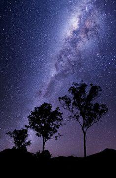 Milky Way spiral arm