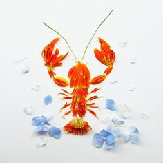 'Here's a lobster made of gerbera and hydrangea, another commissioned work for American Express' - Lim Zhi Wei - Limzy