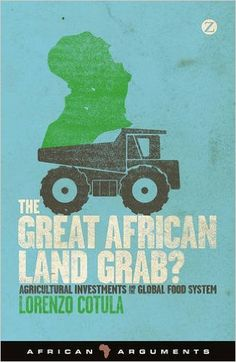 In recent years, large-scale land acquisitions in Africa have stoked controversy, making headlines across the world.Dubbed 'land grabs' in the media, large-scale land acquisitions have become one of the most talked about and contentious topics amongst those studying, working in or writing about Africa. Some commentators have welcomed this corporate and government action in response to security and food shortage fears, others have countered by pointing to its negative impacts.