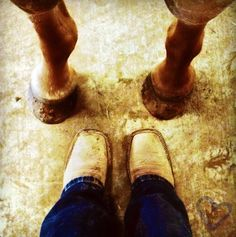 A bond like nothing else<3 #horse #boots