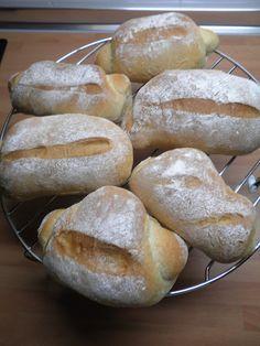 pulgas de pan