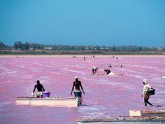 A Pink Lake in Senegal