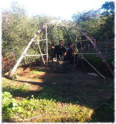 Formando la estructura Green Houses, Permaculture, Vivarium