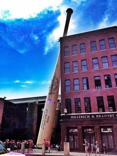 The world's largest bat: Louisville, KY In Louisville, Kentucky, a carbon steel baseball bat leans against and towers over a five-story building on West Main Street. The enlarged replica of a bat used by Babe Ruth in the 1920's marks the site of the Louisville Slugger Museum and Factory. Went!!!!