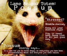 Possum is the embodiment of emotional paralysis and questionable personal hygiene. Possum extends her prehensile tail into your awareness wh...