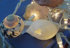 seashell fairy lights. $30.00, via Etsy.